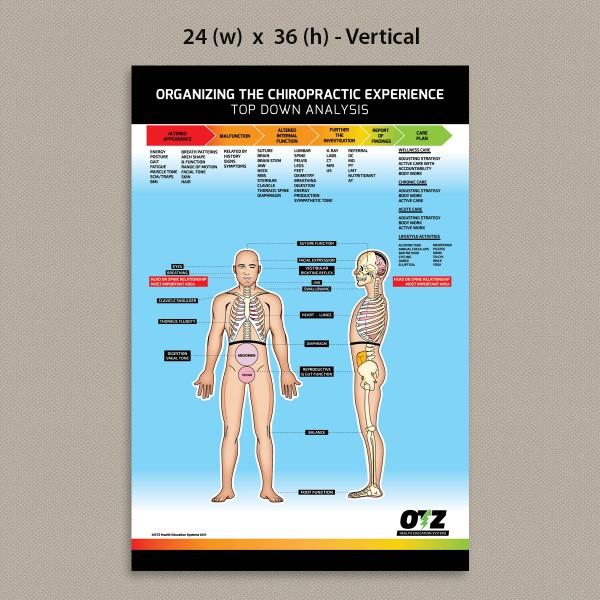 OTZ - Top-Down Analysis Poster