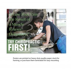 TCF Poster - Low Back Pain (Mechanic)