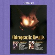 Poster - Chiropractic Results